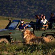 Garden Route Big Five Safari