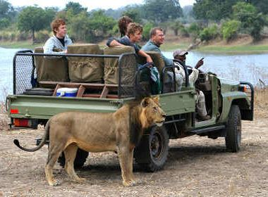 Kapstadt exklusive Garden Route Safari
